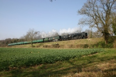 Watercress Line - Bowers Grove Lane - 34007 Wadebridge & 92212