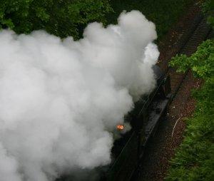 Watercress Line - Boyneswood Road - 31806 (2)