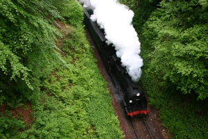 Watercress Line - Boyneswood Road - 31806