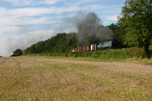 Watercress Railway - Bighton Lane - West Country Class - 34007 Wadebridge