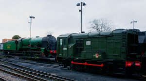 2012 - Watercress Line - Ropley - SR 850 Lord Nelson & class 08 D12049