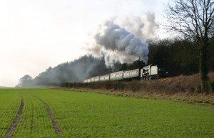 2013 - Watercress Line - Bowers Grove Lane - SR Schools class V - 925 Cheltenham