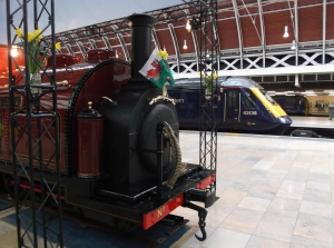 Princess - Paignton Station 2013 - Nick P Littlewood