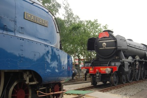 4468 Mallard & 503 Flying Scotsman - National Railway Museum
