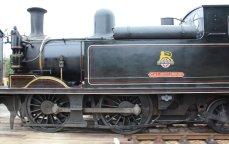 2013 - Isle of Wight Steam Railway - Havenstreet - Ex-LSWR 02 class - W24 Calbourne