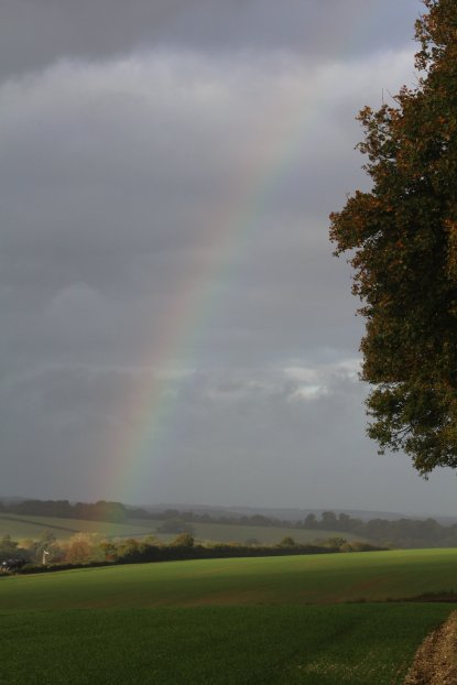 A pot of Railway Enthusiasts Gold at the end of the rainbow
