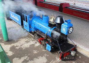 2014 - Eastleigh Lakeside Steam Railway - Spring Steam Gala - Rio Grande 4-6-0 No. 8 David Curwen