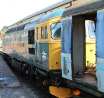 2014 - Swanage Railway - Swanage - Class 33 - 33202 Dennis G Robinson