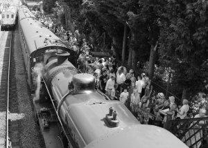 Watercress Festival 2014 Alresford (09) BR ex - Southern Railway U class 31806