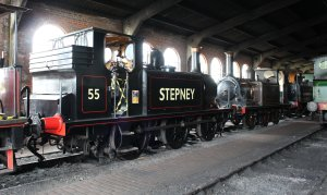 2014 Bluebell Railway - Sheffield Park - Ex-LBSCR A1X Terrier class 55 Stepney lined black
