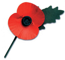 remembrance-poppy2