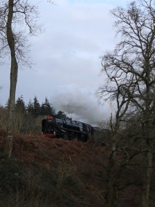 Watercress Railway 2014 A31 (near Medstead and Four Marks) Christmas Santa Specials - BR Standard 9F 92212