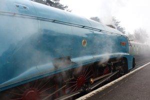 Mid Hants Railway Spring Steam Gala 2015 Ropley - LNER A4 Class 4464 Bittern