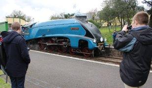 Mid Hants Railway Spring Steam Gala 2015 Ropley - LNER A4 Class 4464 Bittern locoyard team