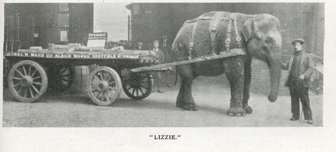1916-05-01 GCRJ p263 'Lizzie'