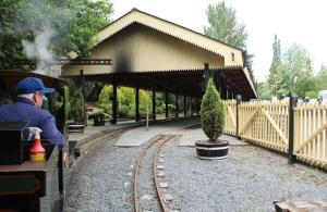 Bickington Steam Railway Trago Mills July 2015 Alice (2)