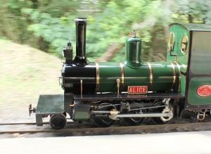 Bickington Steam Railway Trago Mills July 2015 Alice (4)