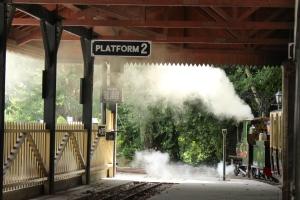 Bickington Steam Railway Trago Mills July 2015 Alice (5)