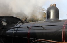 Watercress Line Autumn Steam Gala 24 October 2015 - Ex-LSWR T9 class 30120