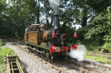 A1X Terrier LBSCR 662 Martello in Steam At Bressingham