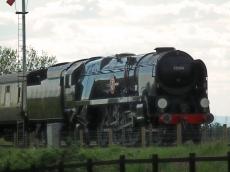 P&O passing the signals at Cheltenham